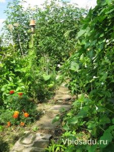 уголок природного сада фото