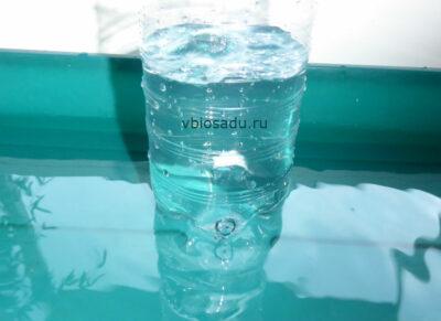 Вода в пластиковой бутылке. Автополив для комнатных цветов