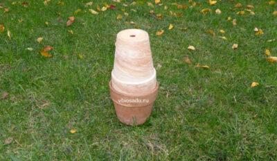 Глиняные горшки для автополива на даче Фото