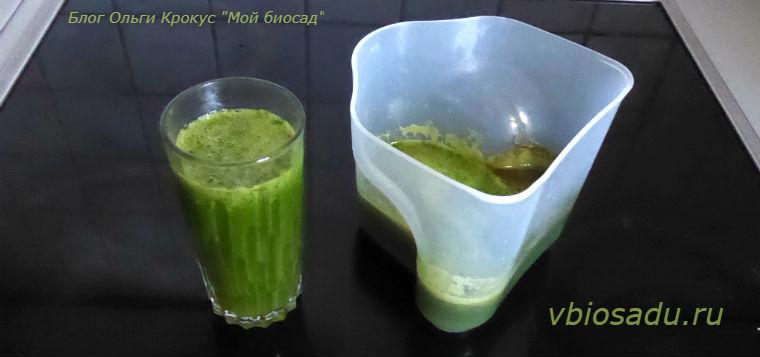 Зелёный сок Фото