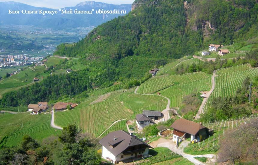 Вид в Альпах, Италия. Фото.