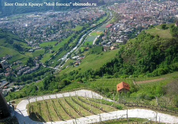 Вид на виноградники сверху Италия Фото